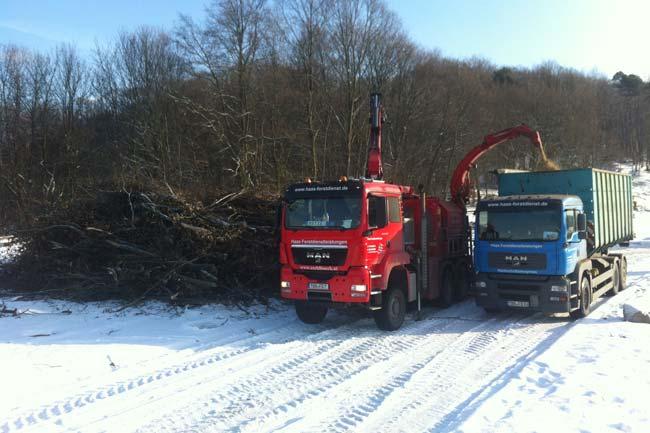 Energieholzaufbereitung06