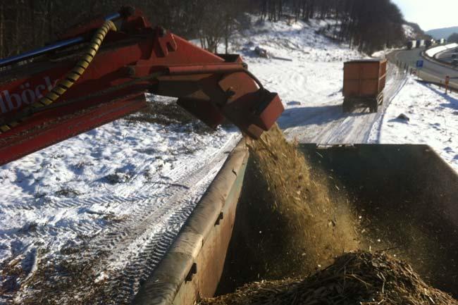 Energieholzaufbereitung07