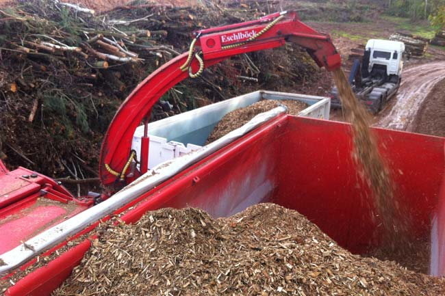 Energieholzaufbereitung13