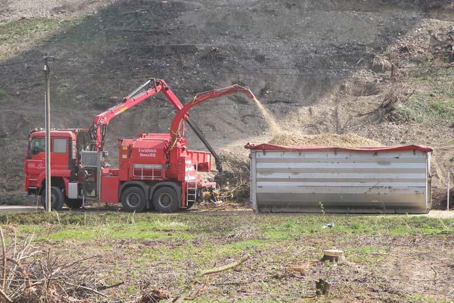 Energieholzaufbereitung17