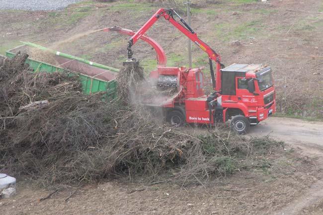 Energieholzaufbereitung19
